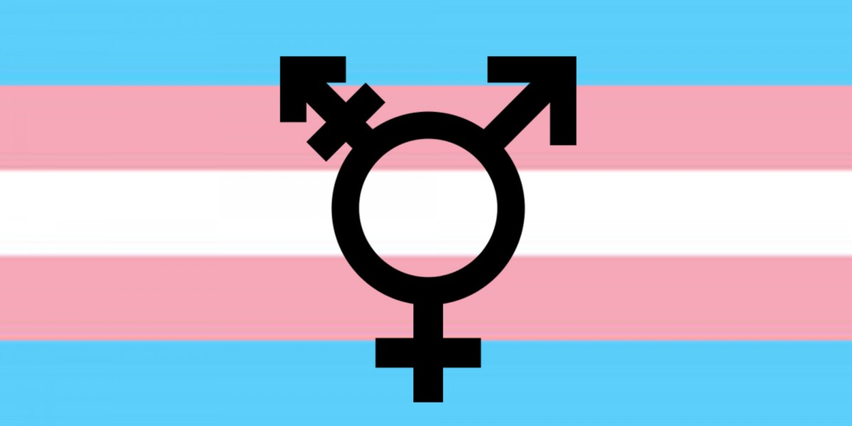 image of the trans flag (pale pink, blue, and white stripes) with a trans symbol on top