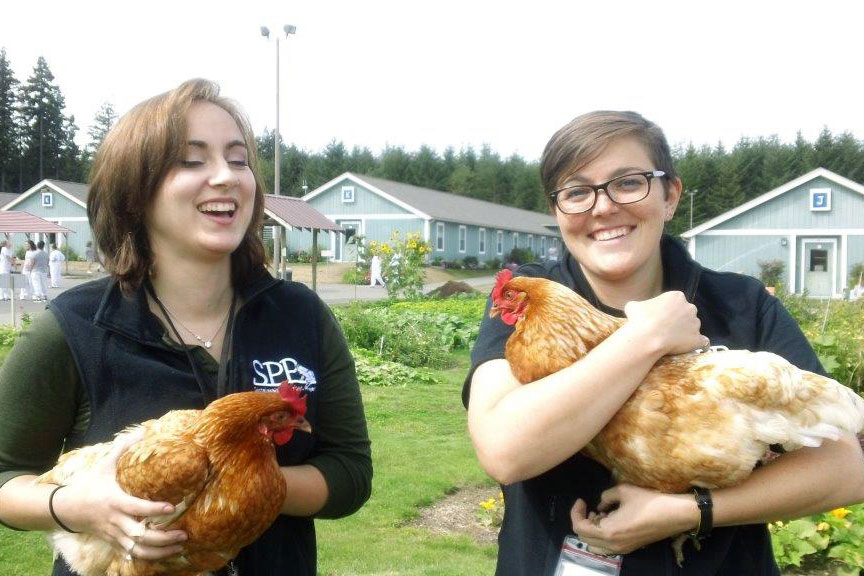 MES graduate students and SPP program coordinators Emily Passarelli and Liliana Caughman had a chance to meet the SPP-funded chickens at WA Corrections Center for Women. Photo by Paula Andrew.