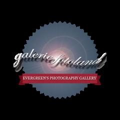 Ellen Garvens: Valence