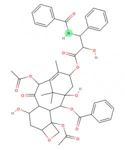 Paclitaxel molecule