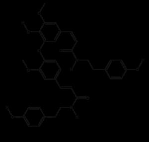 N-feruloyl-tyramine dimer; most abundant phenolic in goji berries