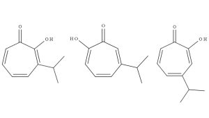 Alpha-, Beta-, and Gamma- thujaplicin isomers